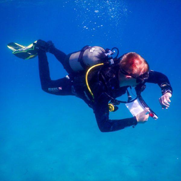 Diving School Pula Become a Scuba Diver Open Water Course Hippocampus Diving Center Istria